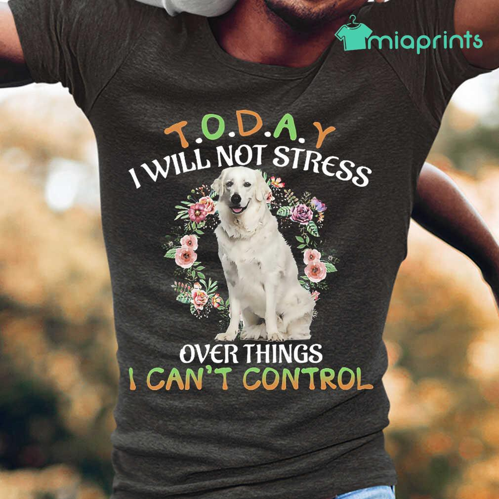 Kuvasz Today I Will Not Stress Over Things I Can't Control Tee Shirts Black